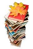 Stapel van boeken en de herfstbladeren Royalty-vrije Stock Afbeeldingen