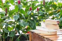 Stapel van boeken op lijst Royalty-vrije Stock Foto's