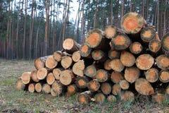 Stapel van brand houten logboeken stock afbeeldingen
