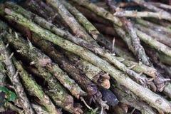 Stapel van Brandhout Stapel van hout royalty-vrije stock afbeelding