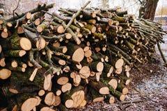 Stapel van gehakt brandhout dat op de winter wordt voorbereid stock afbeeldingen