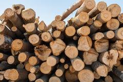 Stapel van gestapeld bovenop elkaar vers gezaagd pijnboom klein hout Royalty-vrije Stock Afbeelding