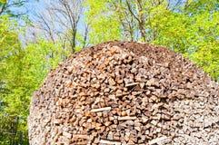 Stapel van gestapeld brandhout in het bos stock foto's