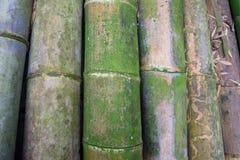 Stapel van groot bamboe Royalty-vrije Stock Foto