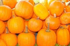 Stapel van grote pompoenen voor Oktoberfest Royalty-vrije Stock Afbeelding