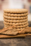 Stapel van heerlijke langs omringde vanillekoekjes Stock Fotografie