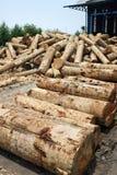 Stapel van hout houten login een fabriek van de triplexmolen stock afbeelding