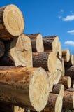 Stapel van hout op blauwe hemelachtergrond Royalty-vrije Stock Fotografie
