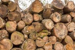 Stapel van houten logboeken Stock Foto's