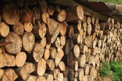 Stapel van houten logboeken Royalty-vrije Stock Afbeelding