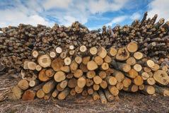Stapel van houten logboeken Stock Afbeelding