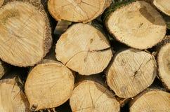Stapel van houten logboeken klaar voor de winter stock foto's
