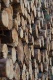 Stapel van houten logboekenclose-up stock afbeelding