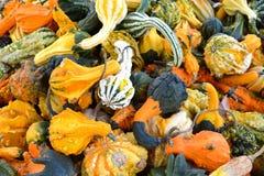 Stapel van Kleurrijke Dalingspompoenen Royalty-vrije Stock Foto