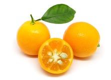 Stapel van Kumquats op Wit wordt geïsoleerd dat royalty-vrije stock afbeeldingen