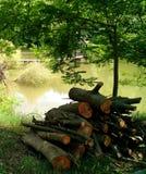 Stapel van logboeken door een vijver stock afbeelding