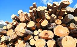 Stapel van logboeken van houthakkers in de winter worden gesneden die royalty-vrije stock foto's