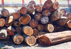 Stapel van Logboeken van Houthout bij in Timmerhoutyard bij Zaagmolen stock foto's