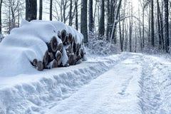 Stapel van logboeken met sneeuw worden behandeld die royalty-vrije stock foto's