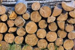 Stapel van logboeken voor brandhout Royalty-vrije Stock Fotografie
