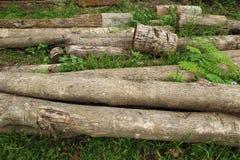 Stapel van oud timmerhout Royalty-vrije Stock Foto