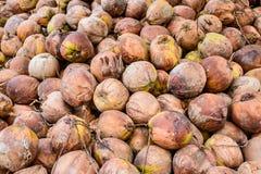 Stapel van oude kokosnoten ter plaatse, Thailand Stock Fotografie