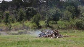 Stapel van puin het branden stock footage