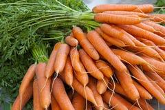 Stapel van rijpe wortelen Stock Fotografie