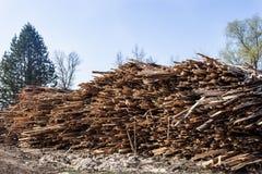 Stapel van ruwe planken van pijnboomhout Royalty-vrije Stock Afbeeldingen