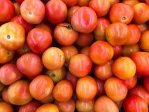 Stapel van tomaten Stock Foto