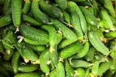 Stapel van verse groene komkommer Royalty-vrije Stock Foto