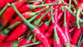 Stapel van verse Spaanse peper op de markt van BANGKOK royalty-vrije stock afbeelding