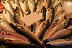 Stapel van vissen bij de markt die op het tegenbureau wordt gericht dat op het verkopen wordt voorbereid Stock Foto's