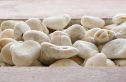 Stapel van witte stenen Royalty-vrije Stock Foto's