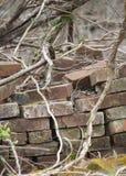 Stapel verlassene Ziegelsteine Lizenzfreie Stockbilder