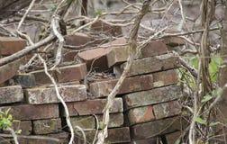 Stapel verlassene Ziegelsteine Stockfotografie