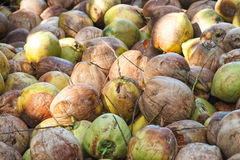 Stapel von alten Kokosnüssen Stockfotos