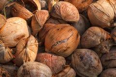 Stapel von alten Kokosnüssen Lizenzfreie Stockbilder