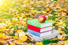 Stapel von Büchern und von rotem Apfel im Wald bei Sonnenuntergang Zurück zu Schule getrennte alte Bücher Schöner Herbsthintergru Stockbilder