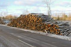 Stapel von Baumstämmen durch den Straßenrand Stockfotografie