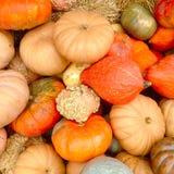 Stapel von bunten Herbstkürbisen Lizenzfreie Stockfotografie