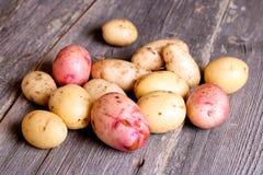 Stapel von den Kartoffeln, die auf hölzernen Brettern liegen Lizenzfreie Stockbilder