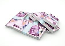 Stapel von die Türkei-Geld lokalisiert auf weißem Hintergrund vektor abbildung