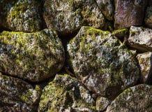 Stapel von Felsen und von Moosanlagen für Hintergrund und Tapete Stockfoto