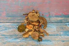 Stapel von getrockneten und frischen Pilzen lizenzfreies stockbild