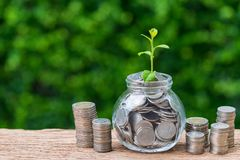 Stapel von Münzen und von Glas mit voll Münzen mit Wachstumssprösslingswinkel des leistungshebels Lizenzfreie Stockbilder