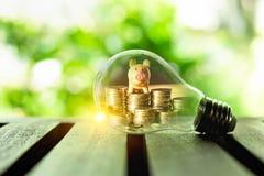 Stapel von Münzen und von Sparschwein innerhalb einer Glühlampe für Rettungsgeldkonzept, kreative Ideen der Unternehmensplanung,  lizenzfreie stockfotos