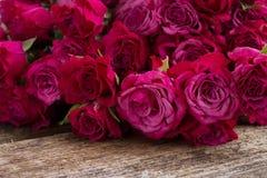 Stapel von malvenfarbenen Rosen Lizenzfreie Stockbilder