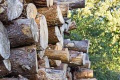 Stapel von meldet das Holz an Stockfotografie