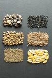Stapel von organischen Samen auf einem schwarzen Hintergrund: Rhabarber, Kopfsalat, rote Rüben, Spinat, Zwiebel, Dill, Melone, Ka stockbild